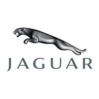 Jaguar Boot Liners